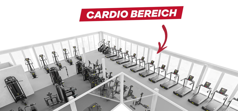 Wohlen_Cardio_Bereich